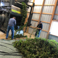 hager-hops-Plant-truck-Northway